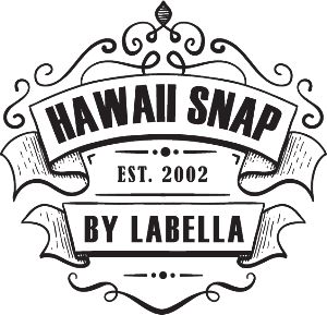 hawaii_snap_logo